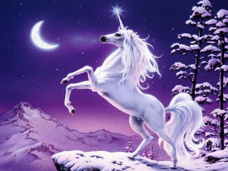 Unicorns don't lie